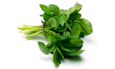 a bunch of watercress